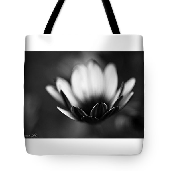 #bw #closeup #petals #someyearsago Tote Bag