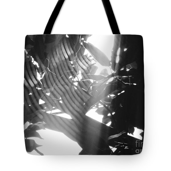 Tote Bag featuring the photograph Bw Radiance by Megan Dirsa-DuBois