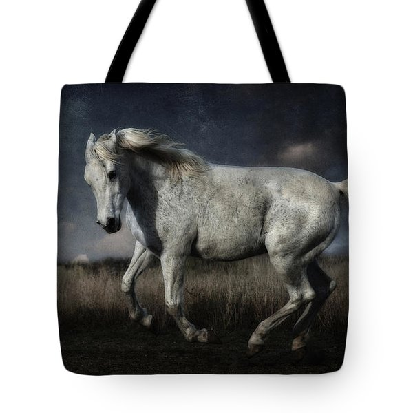 By The Light Of The Silvery Moon Tote Bag by Karen Slagle