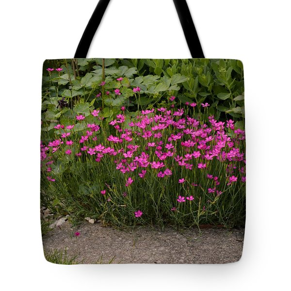 By The Path 2  Tote Bag by Lyle Crump