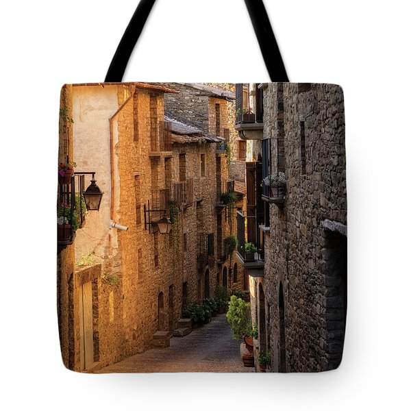 By The Town Of Ainsa In The Province Of Huesca Tote Bag