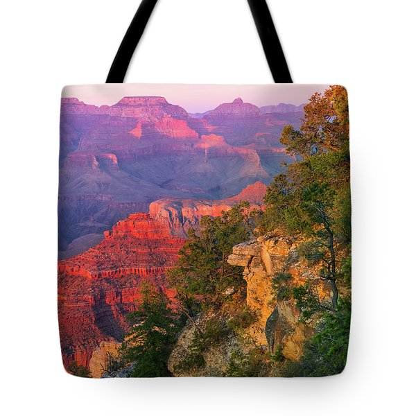 Canyon Allure Tote Bag by Mikes Nature