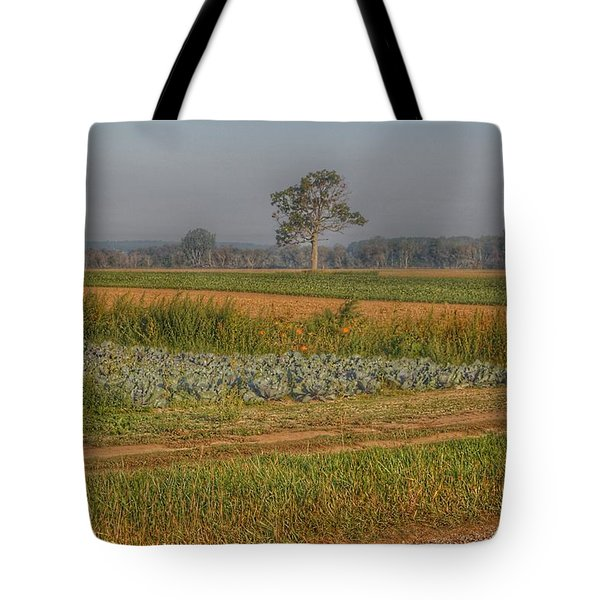2009 - Cabbage And Pumpkin Patch Tote Bag