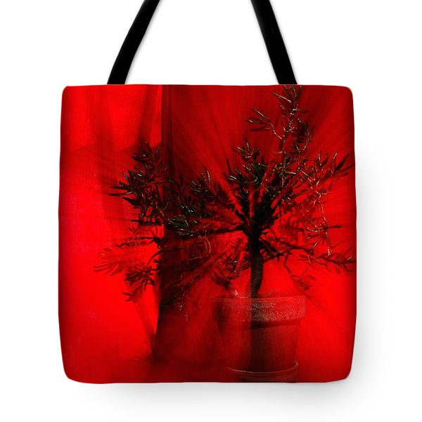 Tote Bag featuring the photograph Cabin Fever Dance by Susan Capuano