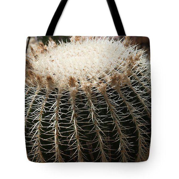 Cacti Fine Art Tote Bag