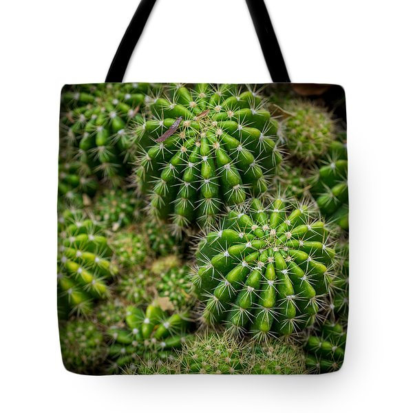 Tote Bag featuring the photograph Cacti by Keith Hawley