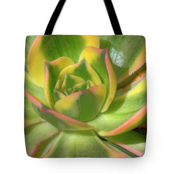 Tote Bag featuring the photograph Cactus 4 by Jim and Emily Bush