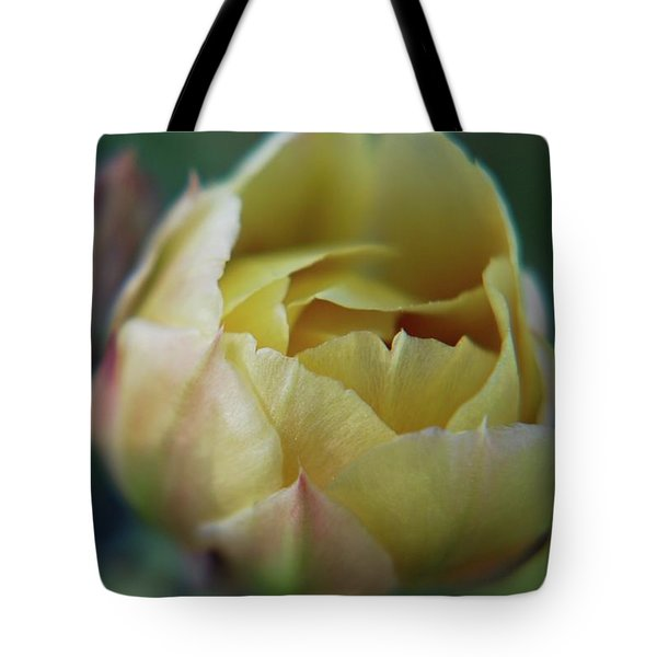 Tote Bag featuring the photograph Cactus Beauty by Amee Cave