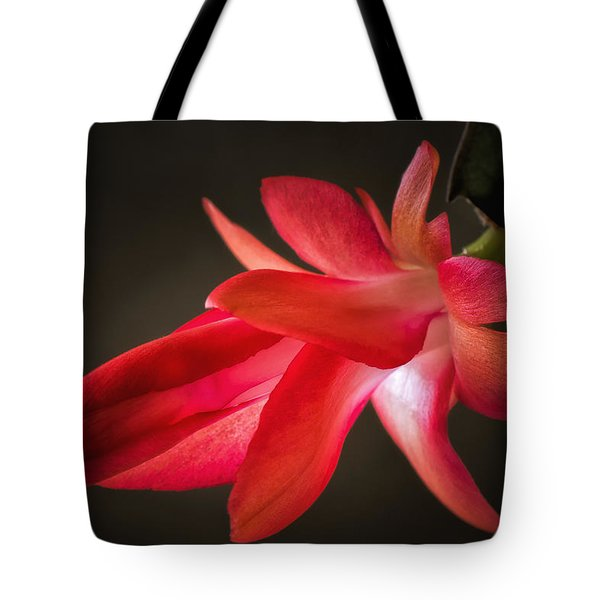 Cactus Bloom Aglow Tote Bag