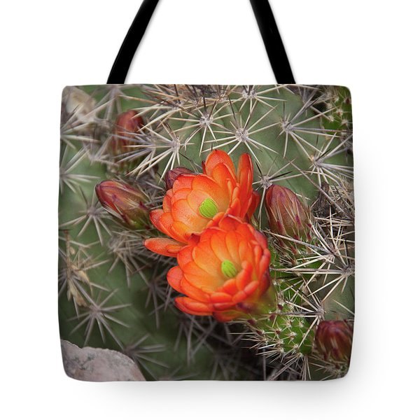 Tote Bag featuring the photograph Cactus Blossoms by Monte Stevens