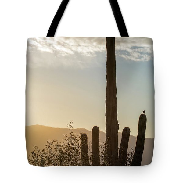 Tote Bag featuring the photograph Cactus Dancing by Dan McManus
