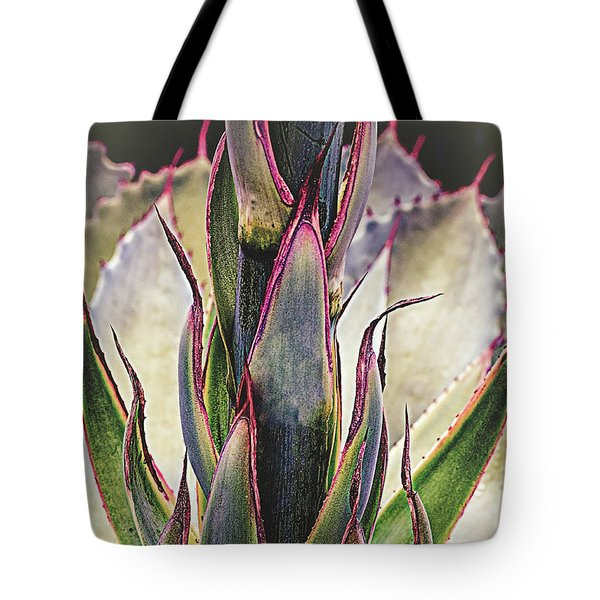 Tote Bag featuring the photograph Cactus Desert Plant by Julie Palencia