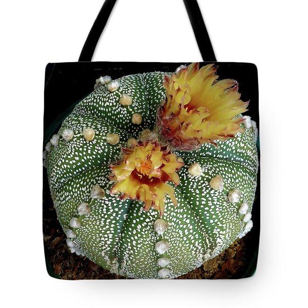 Cactus Flower 10 Tote Bag