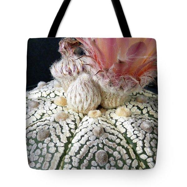 Cactus Flower 6 Tote Bag