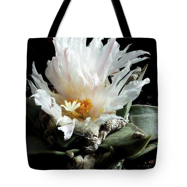 Cactus Flower 8 Tote Bag