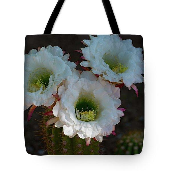 Cactus Flowers Tote Bag