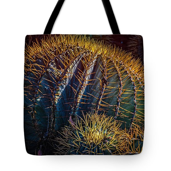 Tote Bag featuring the photograph Cactus by Harry Spitz