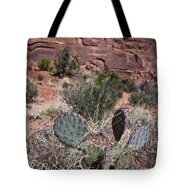 Cactus In Arches Nat'l Park Tote Bag