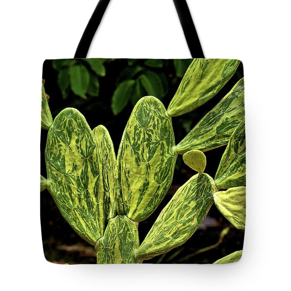 Tote Bag featuring the photograph Cactus Patterns by Richard Goldman