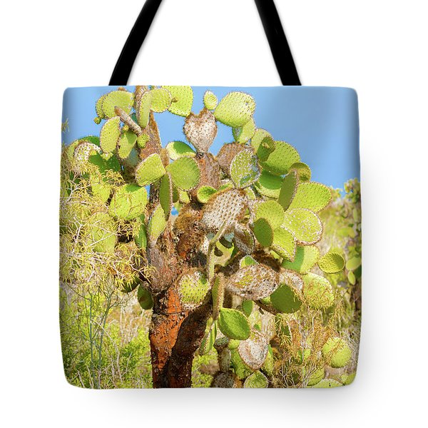 Tote Bag featuring the photograph Cactus Trees In Galapagos Islands by Marek Poplawski