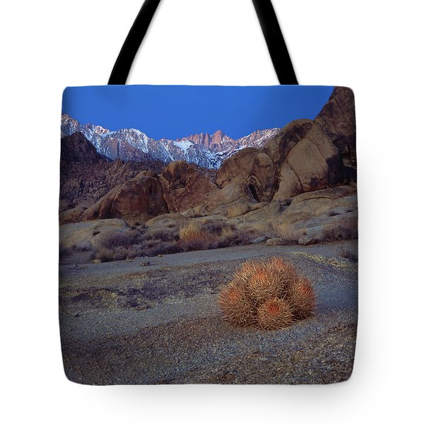 Cactus With A View Tote Bag