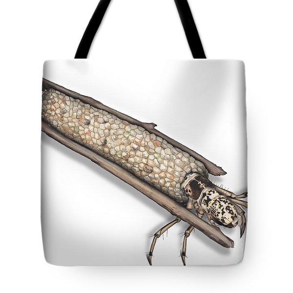 Caddisfly Limnephilidae Anabolia Nervosea Larva Nymph -  Tote Bag