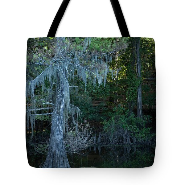 Caddo Lake #1 Tote Bag