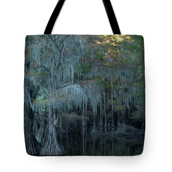 Caddo Lake #2 Tote Bag