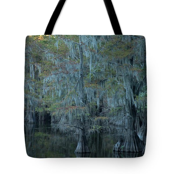Caddo Lake #3 Tote Bag