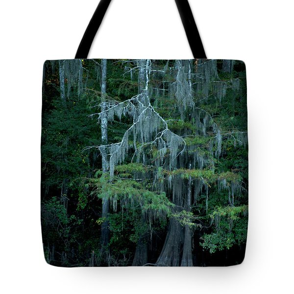 Caddo Lake #4 Tote Bag