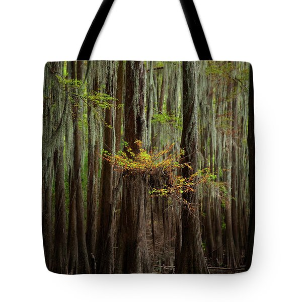 Caddo Lake #5 Tote Bag