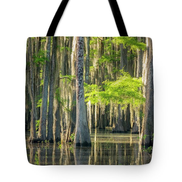 Caddo Swamp 1 Tote Bag
