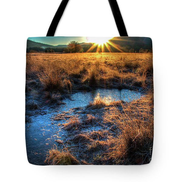 Tote Bag featuring the photograph Cades Cove, Spring 2017,ii by Douglas Stucky