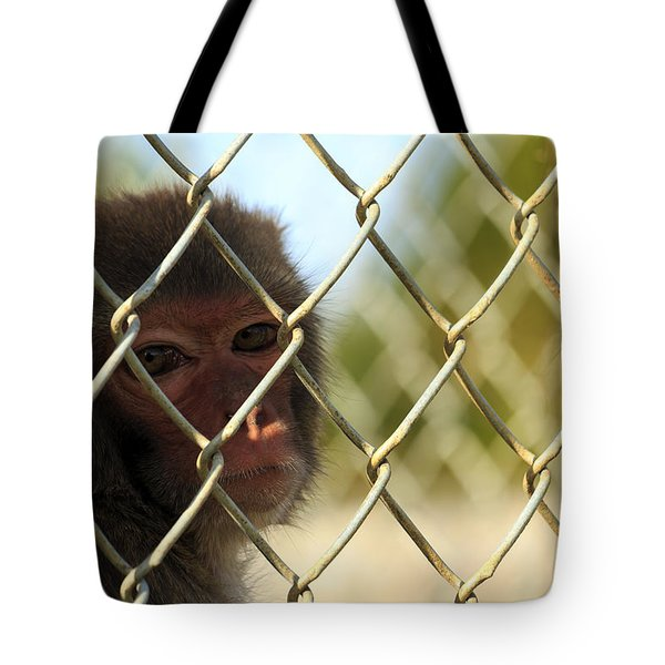 Caged Monkey Tote Bag