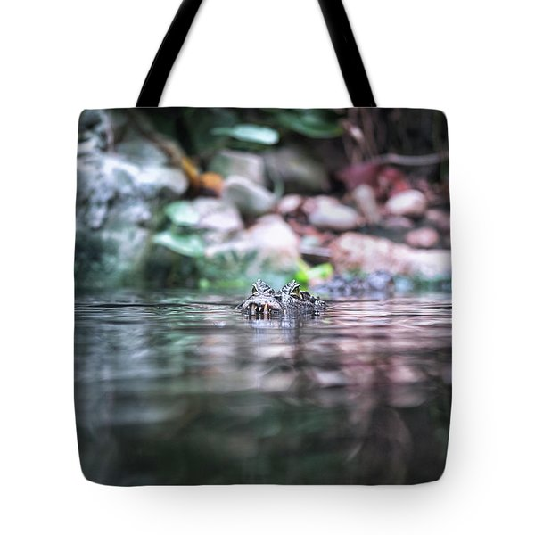 Tote Bag featuring the photograph Caiman by Traven Milovich
