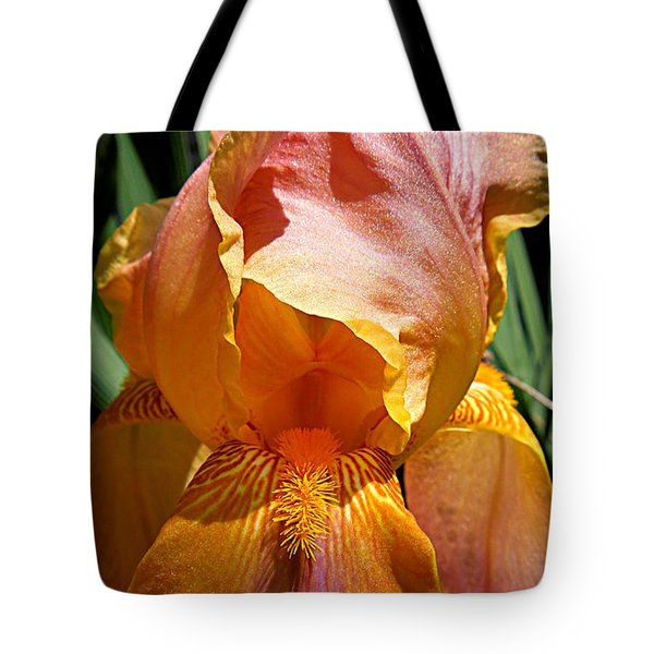 Cajun Sunset Tote Bag by Renee Trenholm