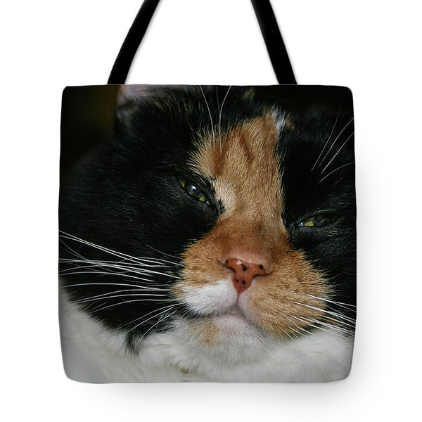 Tote Bag featuring the photograph Cal-2 by Ellen Lentsch