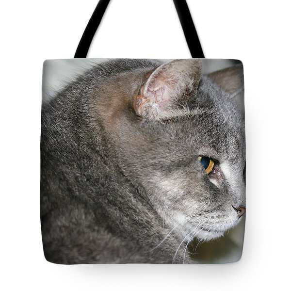 Tote Bag featuring the photograph Cal-6 by Ellen Lentsch