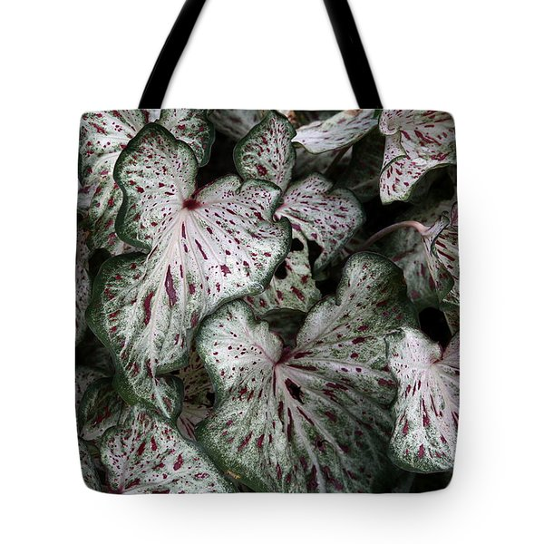 Caladium Leaves Tote Bag
