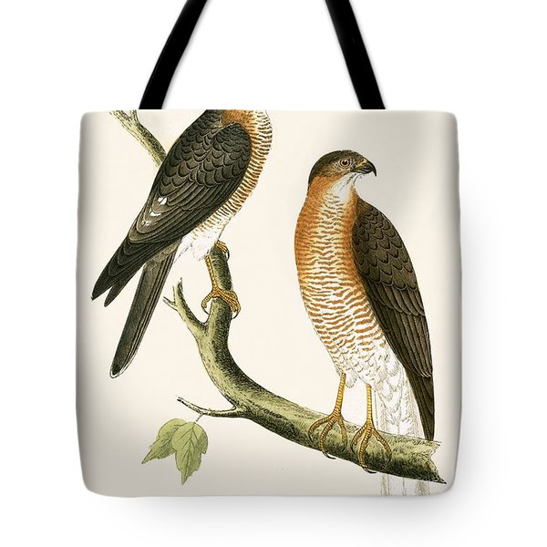 Calcutta Sparrow Hawk Tote Bag by English School