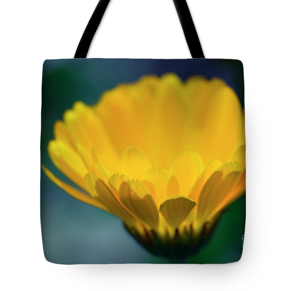 Tote Bag featuring the photograph Calendula by Sharon Mau