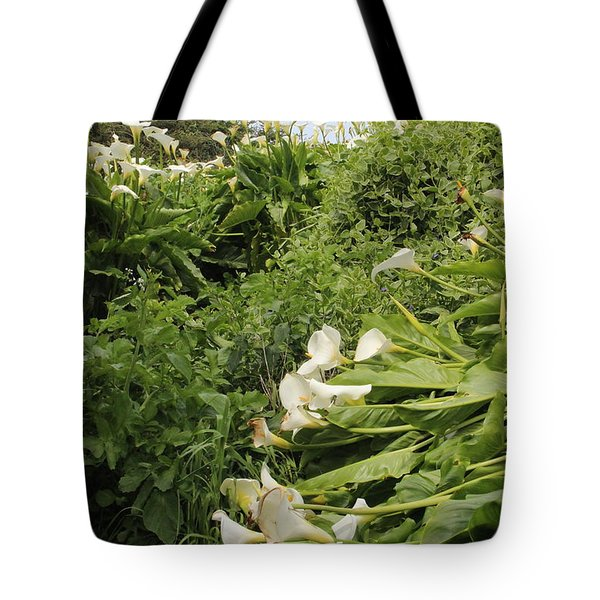 Tote Bag featuring the photograph Cali Can You Hear Me by Marie Neder