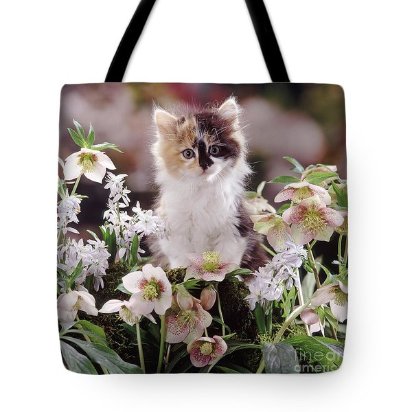 Calico And Scillas Tote Bag