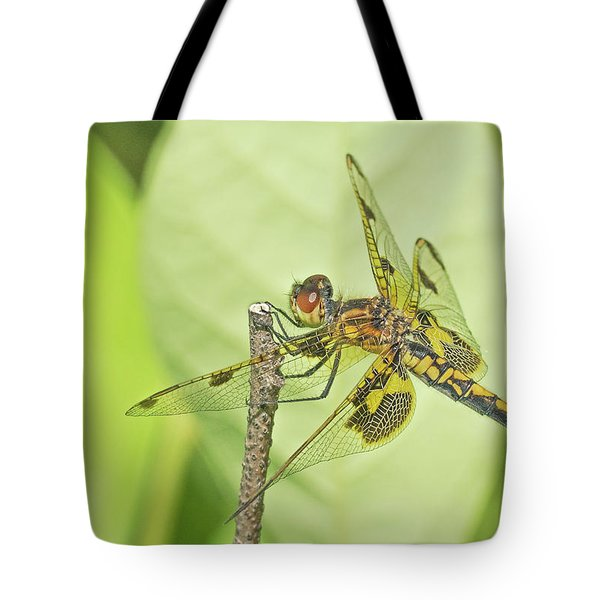 Calico Pennant Tote Bag