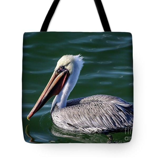 California Brown Pelican In Late Summer Tote Bag