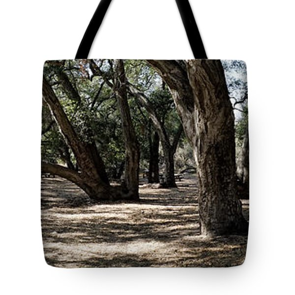 California Canyon Canopy Tote Bag
