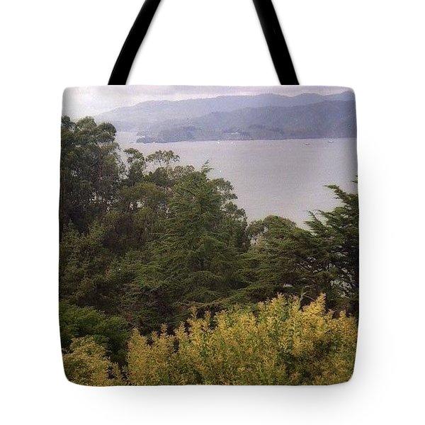 California Coast Fan Francisco Tote Bag by Ted Pollard