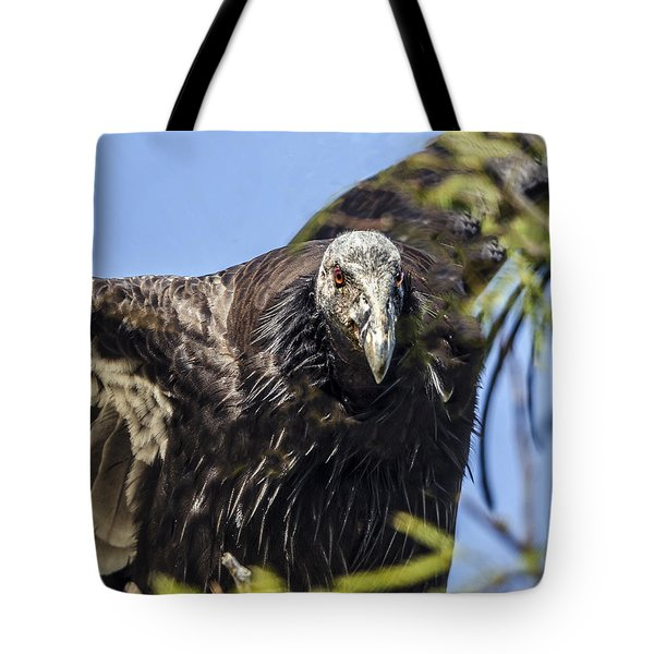 California Condor Portrait Tote Bag