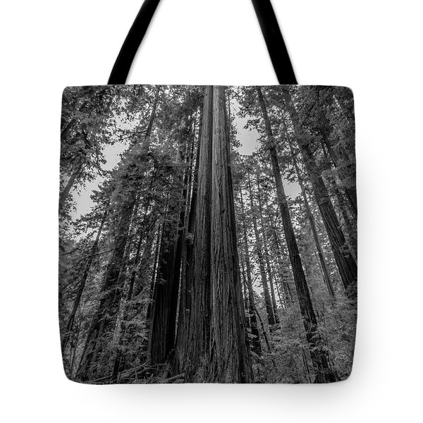 California Forest Tote Bag