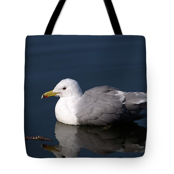 Tote Bag featuring the photograph California Gull by Sharon Talson